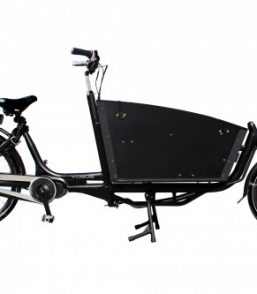 Vogue e-bakfiets Carry 2